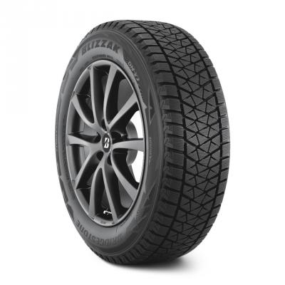 Blizzak DM-V2 Tires